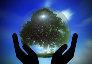 2.5-Compromiso-social-y-de-medio-ambiente